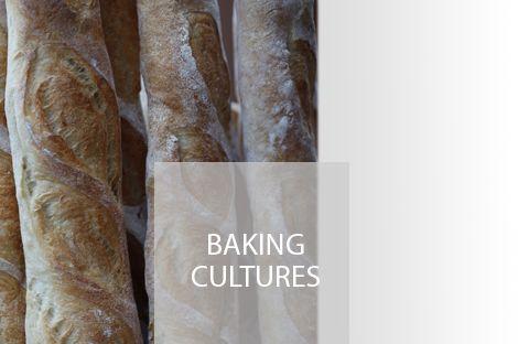 Baking Cultures