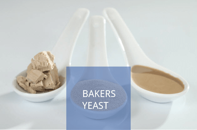 Bakers Yeast